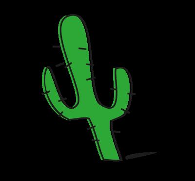 cactus fiestas para adultos
